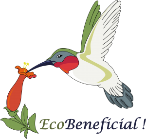 EcoBeneficial! Logo