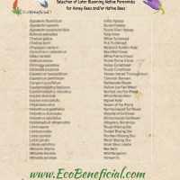 Selection-of-Later-Blooming-Native-Perennials--for-Honey-Bees-and_or-Native-Bees