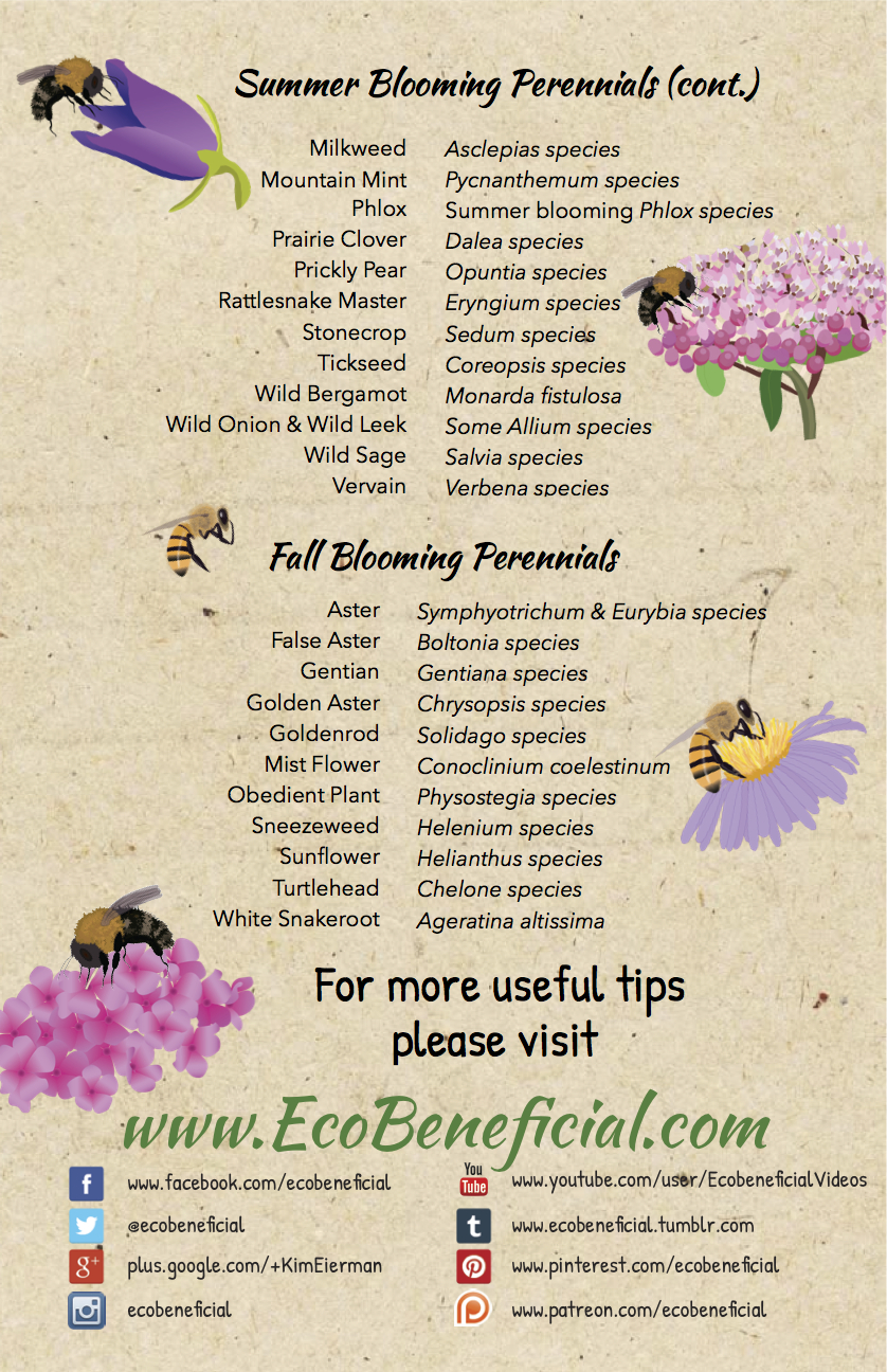 EcoBeneficial Tips Native Perennials for Bees p2