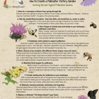 EcoBeneficial-How-to-Create-a-Pollinator-Victory-Garden-Page1