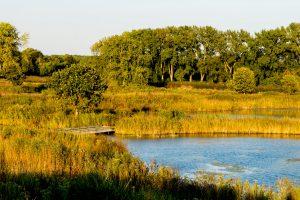 Dixon Prairie (photo by Dave Bolenbaugh_Flickr)