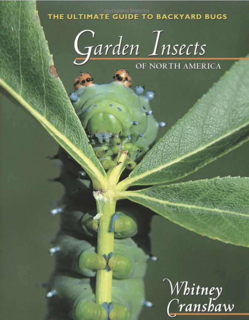Garden-Insects-of-North-America